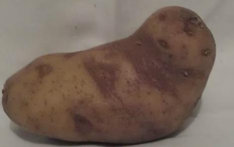 jabba_potato