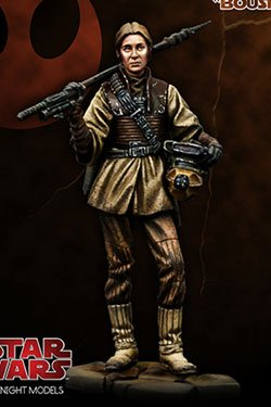 knight_models_boushh4